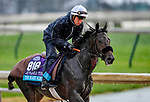 November 1, 2018: The Black Album (FR), trained by Jane Soubagne, exercises in preparation for the Breeders' Cup Juvenile Turf at Churchill Downs on November 1, 2018 in Louisville, Kentucky. Michael McInally/Eclipse Sportswire/CSM