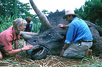 Jurassic Park (1993)<br /> Sam Neill, Laura Dern &amp; Joseph Mazzello<br /> *Filmstill - Editorial Use Only*<br /> CAP/KFS<br /> Image supplied by Capital Pictures