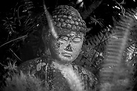 Buddha statue in black and white, Holly Hill, FL, May 2019, Rokinon 300mm f6.3 mirror lens on a Canon EOS 1DX digital body. (Photo by Brian Cleary/ www.bcpix.com )