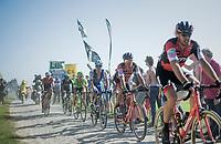 Greg Van Avermaet (BEL/BMC) sitting in Daniel Oss' (ITA/BMC) wheel<br /> <br /> 115th Paris-Roubaix 2017 (1.UWT)<br /> One Day Race: Compi&egrave;gne &rsaquo; Roubaix (257km)