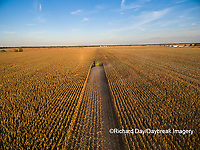 63801-08701 Corn Harvest, John Deere combine harvesting corn - aerial Marion Co. IL