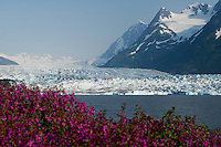 Alaska Railroad Spencer Glacier