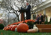 United States President George W. Bush speaks before granting a pardon to a turkey named Pumpkin during the annual White House Turkey Presidential Pardon presentation in the Rose Garden at the White House November 26, 2008 in Washington, DC. Later today Pumpkin will be flown to Disneyland and be an honorary grand marshal of Disney's Thanksgiving Day Parade in California.  The annual White House tradition that has held strong since President Harry S. Truman first pardoned a bird in 1947.  <br /> Credit: Mark Wilson / Pool via CNP