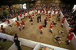East of England Hound Show Peterborough Cambridgeshire. UK
