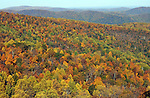Changing colors with autumn leaves on Skyline drive Virginia,Skyline Drive, Skyline Drive is 105 mile road that runs Shenandoah National Park in the Blue Ridge Mountains of Virginia, Changing leaves in fall, Appalachian Trail, Shenandoah National Park, Blue Ridge Mountains, Shenandoah River,