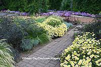 63821-20811 Gardens with Marguerite Daisy (Argyranthemum frutescens), Silver Spike (Helichrysum thianschanicum 'Icicles'), Red Bunny Tails (Penisetum messiacum)  Black Lace Elderberry (Sambucus nigra 'Black Lace') Cantigny, Wheaton, IL