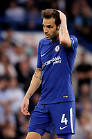 Cesc Fabregas of Chelsea during Chelsea vs Huddersfield Town, Premier League Football at Stamford Bridge on 9th May 2018