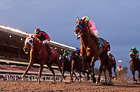 Liaison and Rafael Bejarano win the CashCall Futurity at Hollywood Park in Inglewood, CA. December 17, 2011