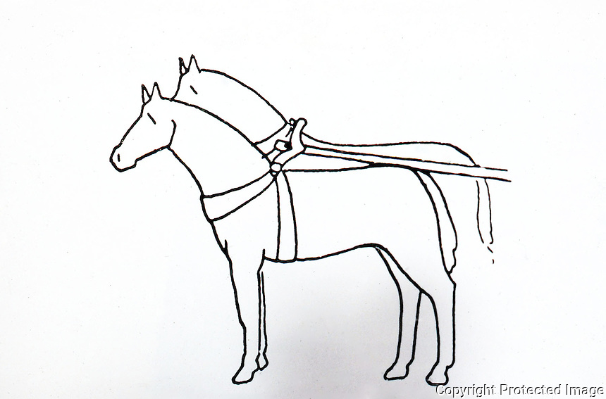 Visual Arts:  Roman Harness--Breast-strap and girth harness, suitable for light chariot.  Repalcement for anatomically unsuitable yoke.  K.D. White, GREEK AND ROMAN TECHNOLOGY.