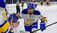 2014.11.15 UBC Women's Hockey vs. Alberta