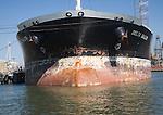 Cargo ship 'Delta Sailor' in shipyard at Botlek, Port of Rotterdam, Netherlands