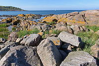 Felsk&uuml;ste am Hafen von Sandvig auf der Insel Bornholm, D&auml;nemark, Europa<br /> rocks at port of Sandvig, Isle of Bornholm, Denmark