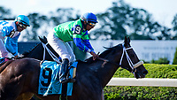 ELMONT, NY - JUNE 09: By the Moon #9, ridden by Rajiv Maragh, wins the Bed O' Roses Stakes during Friday racing at the Belmont Stakes Racing Festival at Belmont Park on June 9, 2017 in Elmont, New York (Photo by Scott Serio/Eclipse Sportswire/Getty Images)