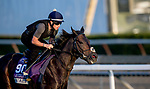 October 30, 2019: Breeders' Cup Juvenile Turf Sprint entrant A'Ali, trained by Simon Crisford, exercises in preparation for the Breeders' Cup World Championships at Santa Anita Park in Arcadia, California on October 30, 2019. Michael McInally/Eclipse Sportswire/Breeders' Cup/CSM