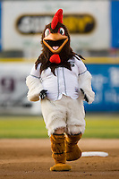 Princeton Devil Rays mascot Roscoe the Rooster rounds the bases during the mascot race at Hunnicutt Field in Princeton, WV, Friday, August 10, 2007.
