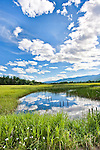 Swan River National Wildlife Refuge in the Swan Valley, Montana lies south of Swan along the Swan River and north of the gorgeous recreational center of Seeley Lake, Montana.  An easy day trip from Missoula or the Flathead area.