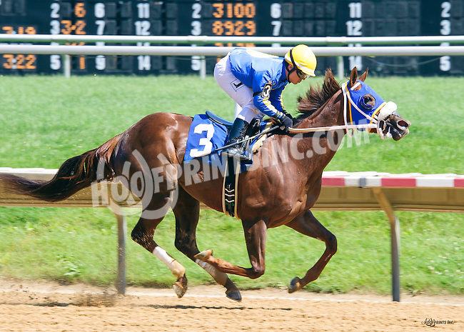 Lemon Lover winning at Delaware Park on 6/9/16