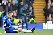 2nd December 2017, Stamford Bridge, London, England; EPL Premier League football, Chelsea versus Newcastle United; Eden Hazard of Chelsea goes to ground for a penalty