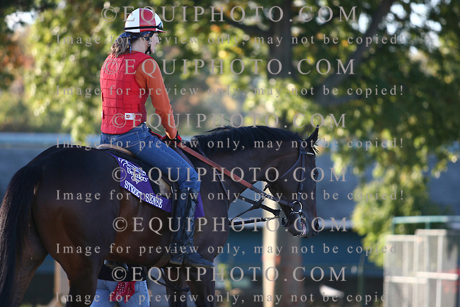 Kentucky Derby Champion Street Sense hit the track at Monmouth Park in Oceanport, N.J. for the first time on Sunday morning on October 21, 2007 with exercise rider Tracey Wilkes aboard.  Street Sense will compete in the $5,000,000 Breeders' Cup Classic on Saturday October 27, 2007 at Monmouth Park.   Photo By Bill Denver/EQUI-PHOTO