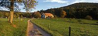 Europe/France/Alsace/67/Bas-Rhin/Gimbelhof : Ferme du Gimbelhof -Parc Naturel Régional des Vosges du Nord