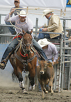 26 Aug 2010:  Clint Arave scored a time of 10.0 in the slack Tie Down Roping competition at the Kitsap County Stampede Wrangle Million Dollar PRCA Silver Rodeo Tour Bremerton, Washington.