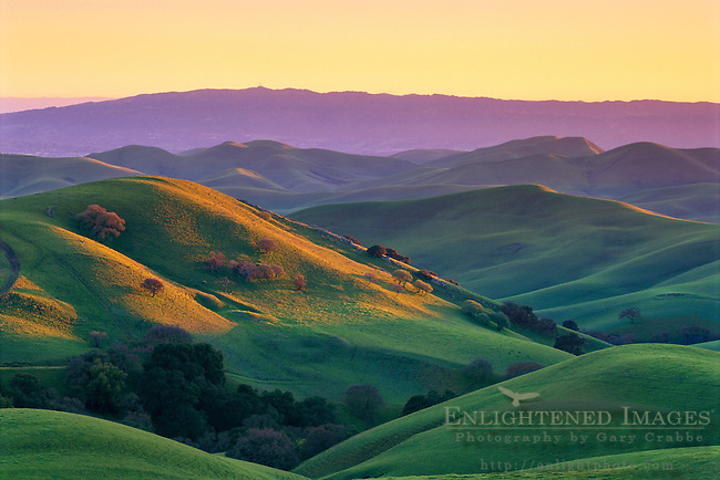 Sunset light on green hills in spring, Tassajara Region, near Livermore Contra Costa County, CALIFORNIA