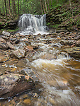 Dry RunFalls, Loyalsock State Forest, PA. Spring