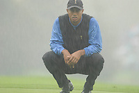 Ryder Cup 206 K Club, Straffin, Ireland...American Ryder Cup team player Tiger Woods on the edge of the 12th green during the morning fourballs session of the second day of the 2006 Ryder Cup at the K Club in Straffan, Co Kildare, in the Republic of Ireland, 23 September 2006...Photo: Eoin Clarke/ Newsfile.