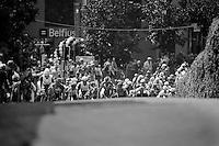 Heistse Pijl 2013<br /> <br /> peloton in Heist-op-den-Berg
