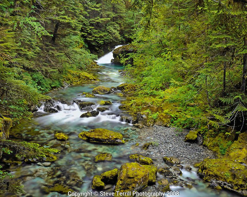 Falls on Opal Creek in Opal Creek Wilderness, Oregon