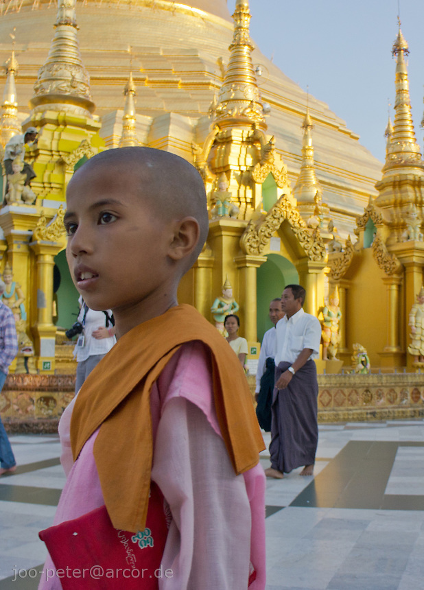 young nun in front of stupa and shrines of Shwedagon pagoda, Yangon, Myanmar, 2011