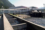 Alaska, Juneau: Gastineau/Macaulay Salmon Hatchery..Photo #: alaska10069 .Photo copyright Lee Foster, 510/549-2202, lee@fostertravel.com, www.fostertravel.com..