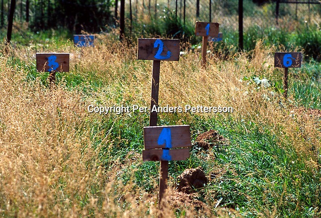 A grave yard with fresh graves on June 18, 1999 in Suva Reka, Kosovo. These people were allegedly killed by Serbs paramilitary forces during the terror campaign in Kosovo in 1998-99. .(Photo: Per-Anders Pettersson/ Getty Images)