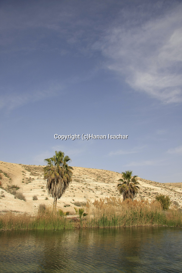 Israel, Negev. Golda Park Near Revivim named after former prime minister Golda Meir