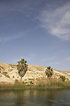 Israel, Negev. Golda Park Near Revivim named after former prime minister Golda Meir