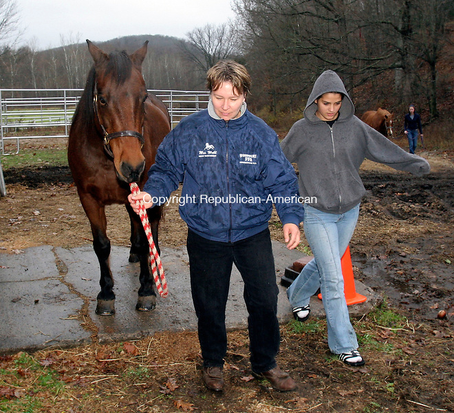 "WOODBURY, CT-13November 2006-111306TK09- (left to right) Liz Webb, a horse management teacher along with Stephanie Tripodi of New Fairfield lead ""Willie"" a Morgan Geldin out of the rain to a dry stable for grooming. Tom Kabelka Republican-American (Liz Webb, Stephanie Tripodi)"