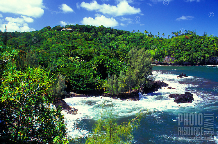 North Hilo coastline of onomea taken from Hawaii tropical botanical gardens