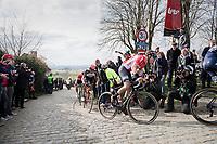 Jelle Wallays (BEL/Lotto-Soudal) on top of the Paterberg<br /> <br /> 72nd Dwars Door Vlaanderen (1.UWT)<br /> 1day race: Roeselare &rsaquo; Waregem BEL (203.4km)