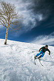 USA, Colorado, Aspen, a skier carves a turn at the top of Bear Paw run, Aspen Ski Resort, Ajax
