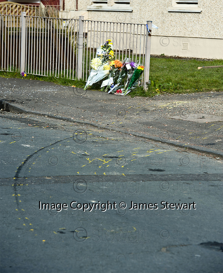 The location in Crindledyke Drive, Newmains, where Frank Baxter was knocked down and killed ......