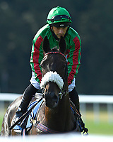 Aegeus ridden by Silvestre De Sousa goes down to the start of The AJN Steelstock Beckie Lawrence Handicap  during Horse Racing at Salisbury Racecourse on 9th August 2020