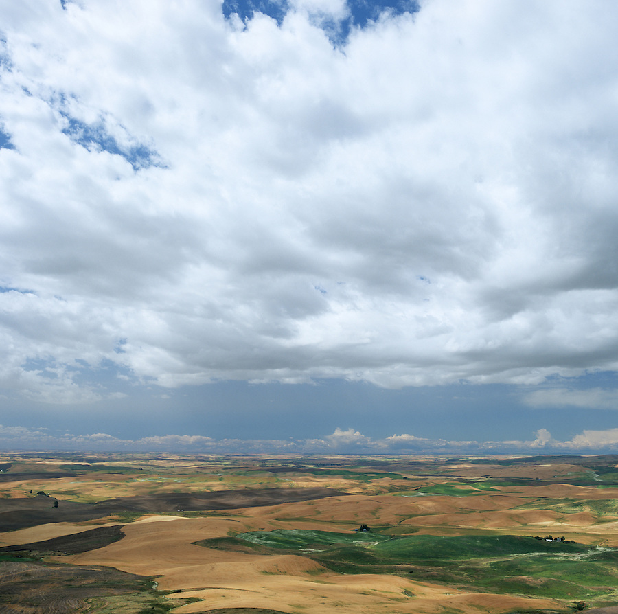 A beautiful sunny day with white clouds over the Palouse in Eastern Washington State.