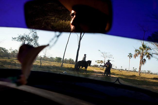 A illegal rancher in the Mayan Biosphere drives out to check on his cattle.