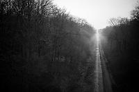 Paris-Roubaix course: Bois de Wallers-Arenberg sector
