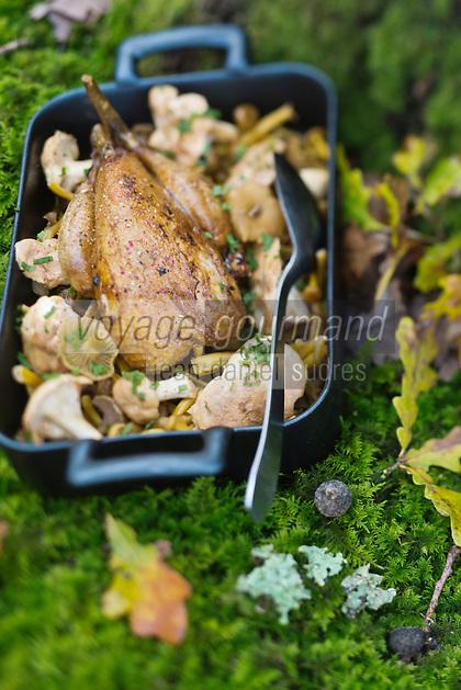 Europe/France/Centre/41/Loir-et-Cher/Sologne/Bracieux: Faisan rôti aux champignons de la forêt solognote, recette de Didier Doreau,   du Rendez-vous des Gourmets  // Europe/France/Centre/41/Loir-et-Cher/Sologne/Bracieux:  Roast pheasant with mushrooms of the Sologne forest, recipe Didier Doreau, Restaurant: Rendez-vous des Gourmets