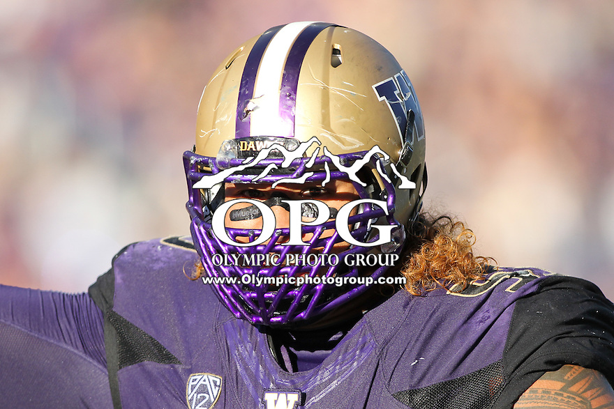 Sept 20, 2014:  Washington's Danny Shelton against Georgia State.  Washington defeated Georgia State 45-14 at Husky Stadium in Seattle, WA.