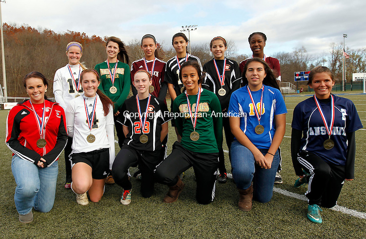 Waterbury, CT-03 November 2012-110312CMXX- ALL NVL Team: Kneeling left to right, Sarah Levins, Wolcott, Audrea Blewitt,.Woodland, Lindsay Sasso, Watertown, Keili Sullivan, Holy Cross, Jessica Alves, Seymour and Taylor Ross, Ansonia.  Top row, left to right:  Keri Dibiase, Woodland, Mae Janiga, Holy Cross, Alexya Alves, Naugatuck, Alma Rizvani, Woodland, Lily Cotas, Watertown andToni Wilson, Torrington.  Christopher Massa Republican-American