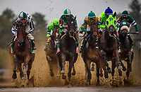 LEXINGTON, KY - OCTOBER 08: The field for the Juddmonte Spinster Stakes races on a sloppy track at Keeneland Race Course on October 08, 2017 in Lexington, Kentucky. The eventual winner, Romantic Vision #11 with Brian Hernandez aboard is far left.(Photo by Alex Evers/Eclipse Sportswire/Getty Images)