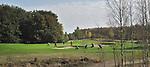 LIEREN bij Apeldoorn - Hole 13 van Golf en Businessclub  De Scherpenbergh . COPYRIGHT KOEN SUYK