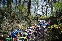 peloton up the Haagaard climb<br /> <br /> 55th Brabantse Pijl 2015